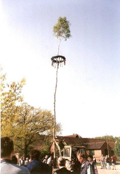 Aufstellung des 1. Maibaums